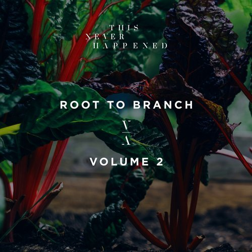 VA – Root To Branch Vol 2