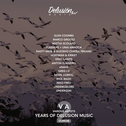 VA - 2 Years Of Delusion Music [DLM038]