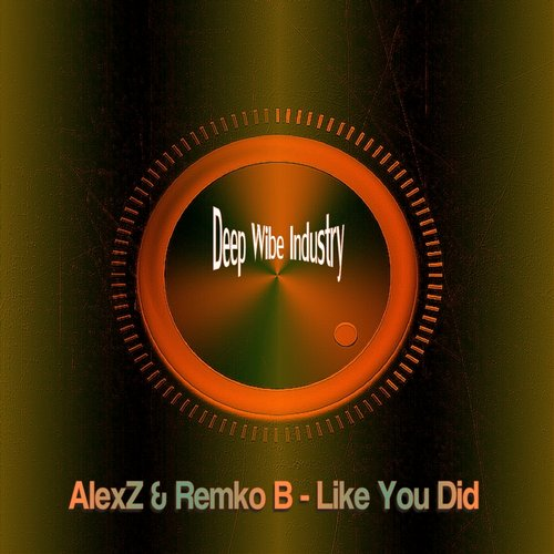 AlexZ, Remko B - Like You Did
