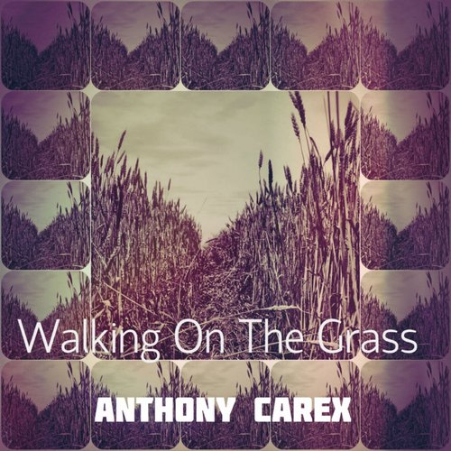 Anthony Carex - Walking On The Grass [NANO 030]