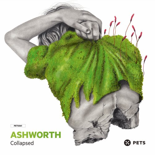 Ashworth – Collapsed EP [PETS061]
