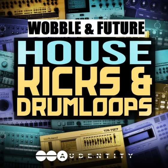 Audentity Wobble and Future House Kicks and Drumloops WAV