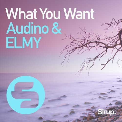 Audino, ELMY - What You Want [SIR1002]