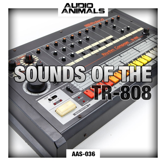 Audio Animals Sounds Of The TR 808 WAV