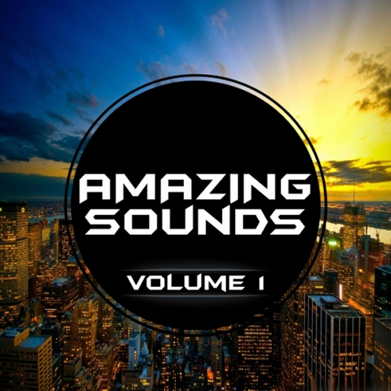 Banger music records sylenth session amazing sounds 1 fxb for Amazing house music
