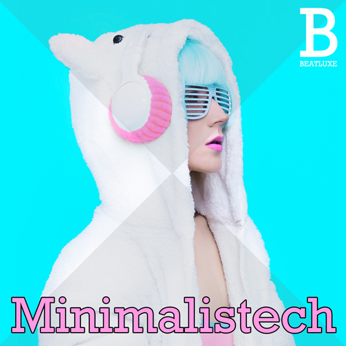 Beatluxe Minimalistech Minimal Deep and Tech House Loops ACID WAV REX-KRock