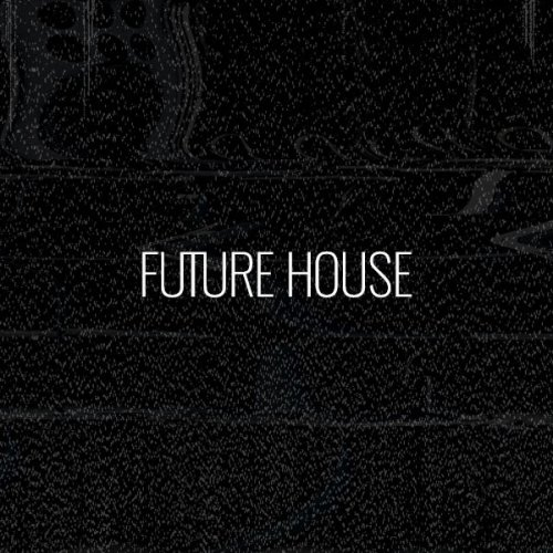 Beatport Biggest Basslines 2017: Future House