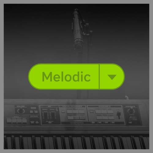 Beatport Top Tagged Tracks Melodic