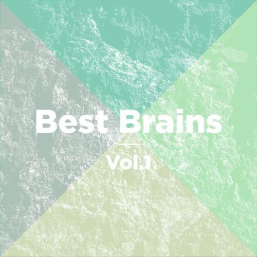 VA - Best Brains Vol 1 2017 [BBR01]