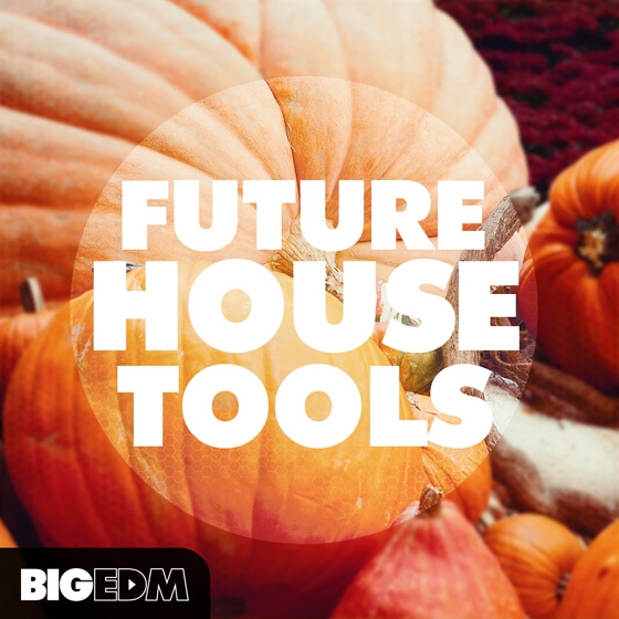 Big EDM Future House Tools MULTiFORMAT