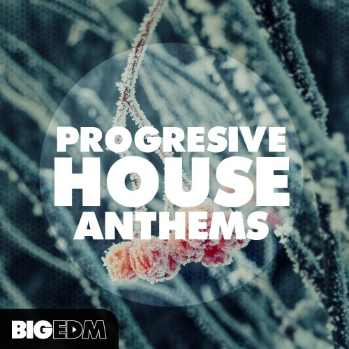 Big EDM Progressive House Anthems WAV MiDi FLPs Sylenth SPiRE Presets TUTORiAL