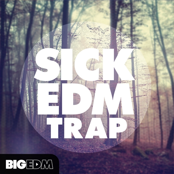 Big EDM Sick EDM Trap MULTiFORMAT