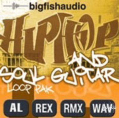 Big Fish Audio Hip Hop And Soul Guitar Loop Pak MULTIFORMAT-PAD