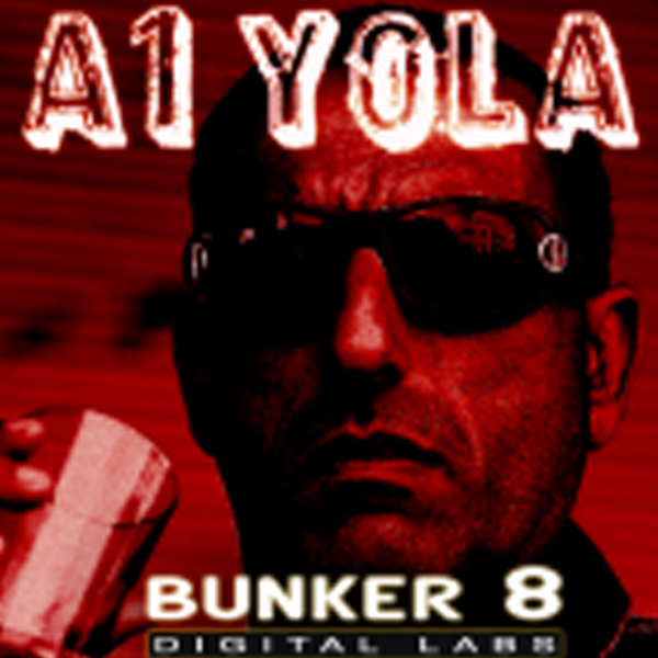 Bunker 8 Digital Labs A1 Yola vol.1 MULTiFORMAT DVDR-DYNAMiCS