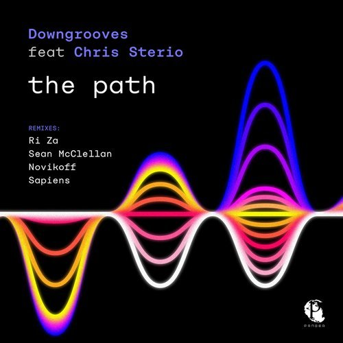 Chris Sterio, Downgrooves - The Path [PANG063]