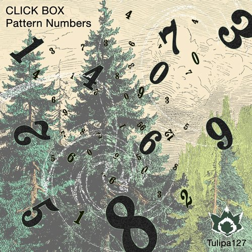 Click Box – Pattern Numbers [TULIPA127]