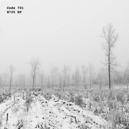 Code 701 – H725 EP [WR022]