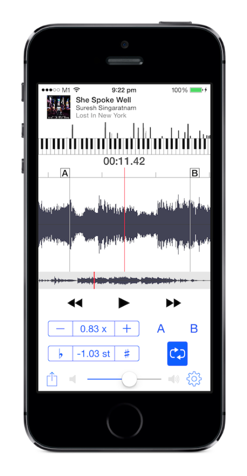 Cognosonic AudioStretch v4.4 iOS