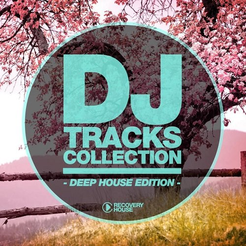 VA - DJ Tracks Collection Deep House Edition [RHCOMP1798]