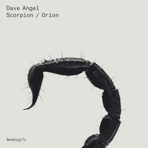 Dave Angel - Scorpion / Orion [BEDDIGI71]