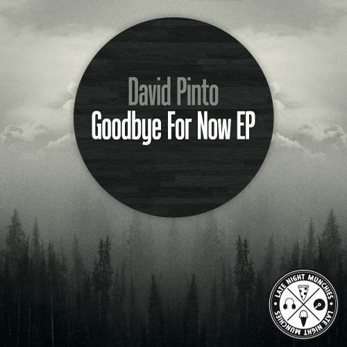 David Pinto - Goodbye For Now EP [811868 866840]
