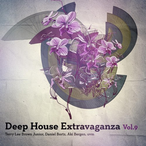 VA - Deep House Extravaganza Vol. 9 [TS844]