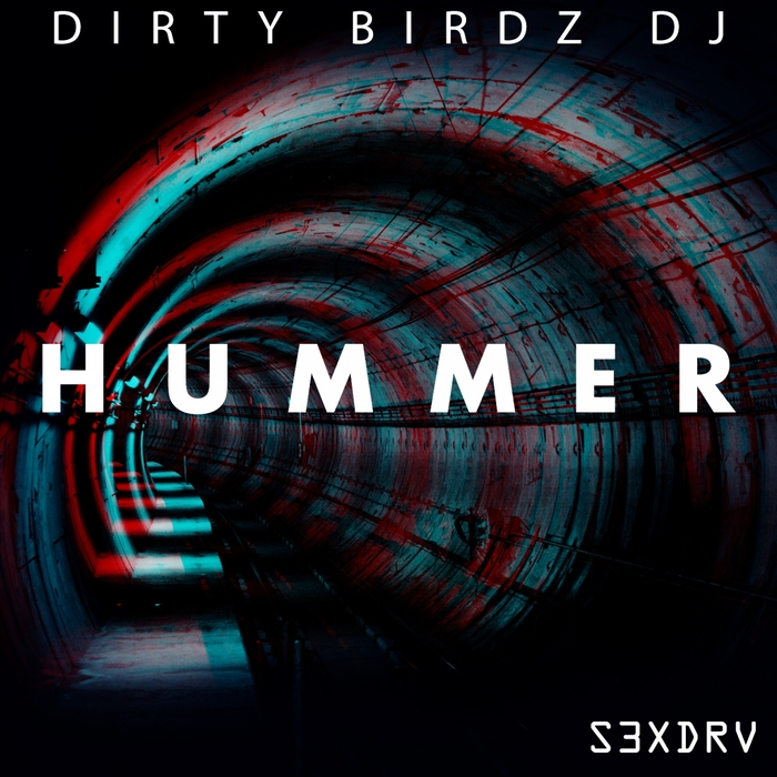 Dirty Birdz Dj - Hummer [S3X 011]