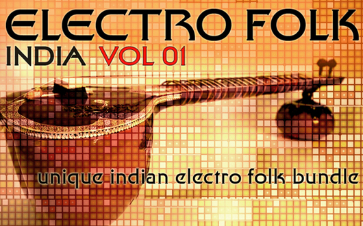Earth Moments Electro Folk India Vol.1 WAV