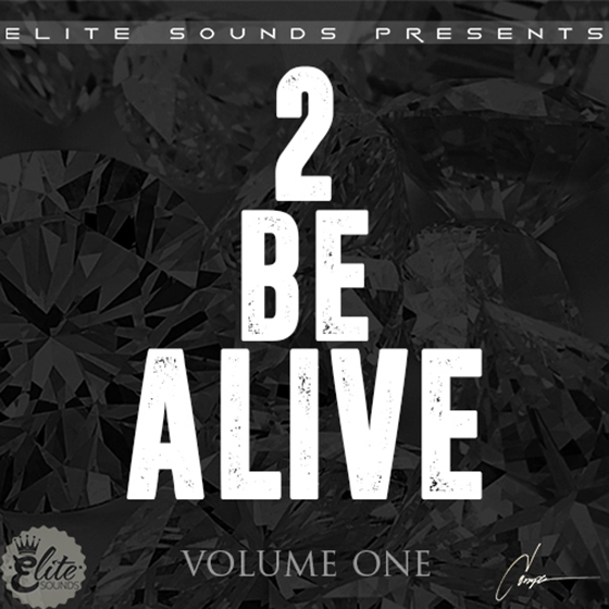 Elite Sounds 2 Be Alive Vol 1 WAV MiDi
