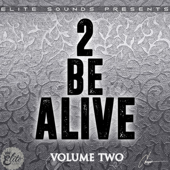 Elite Sounds 2 Be Alive Vol 2 WAV MiDi