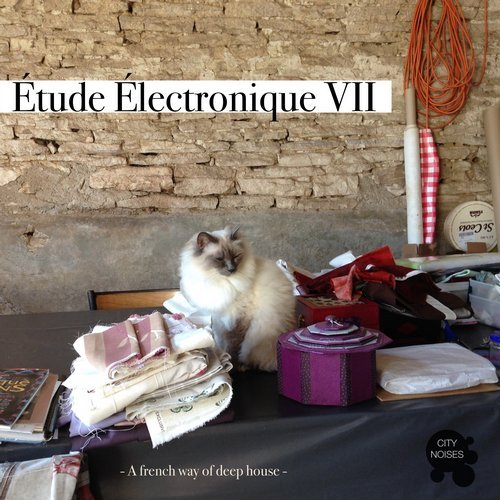 Etude Electronique VII – A French Way Of Deep House 2017 [CITYNOISES137]