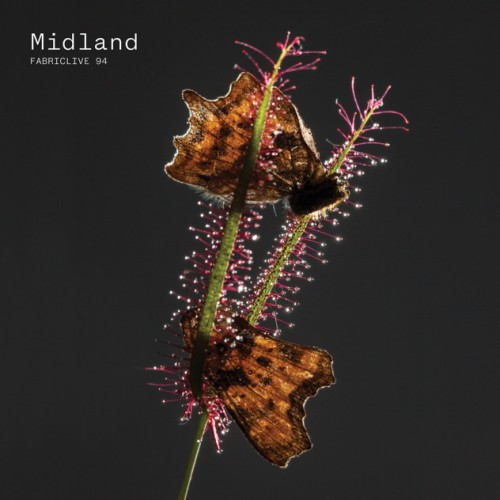 VA - FabricLive 94 mixed by Midland [fabric188]