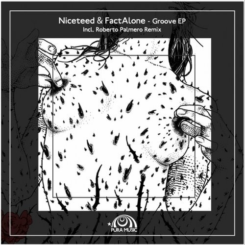FactAlone, Niceteed – Groove EP [CAT90890]