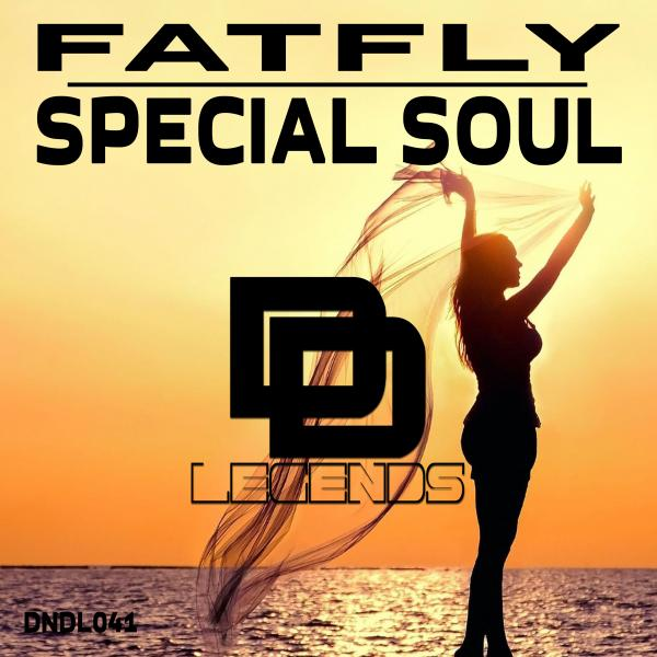 FatFly - Special Soul [DNDL041X]
