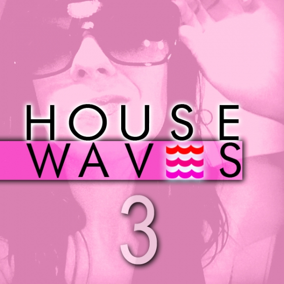 Fox Samples House Waves 3 WAV MiDi