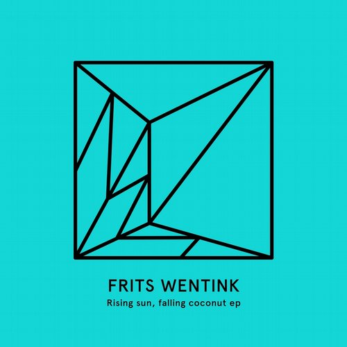 Frits Wentink – Rising Sun, Falling Coconut [HEIST 014]