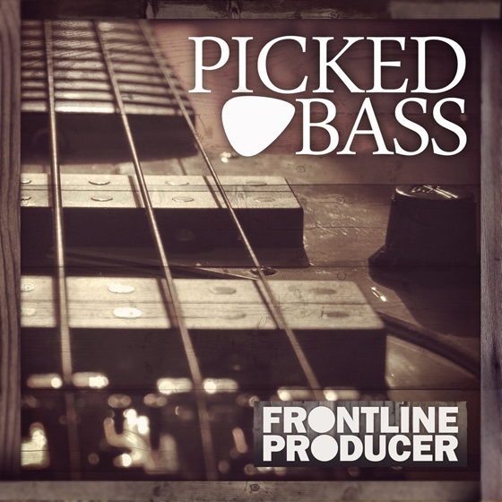 Frontline Producer Picked Bass WAV REX-AUDIOSTRiKE