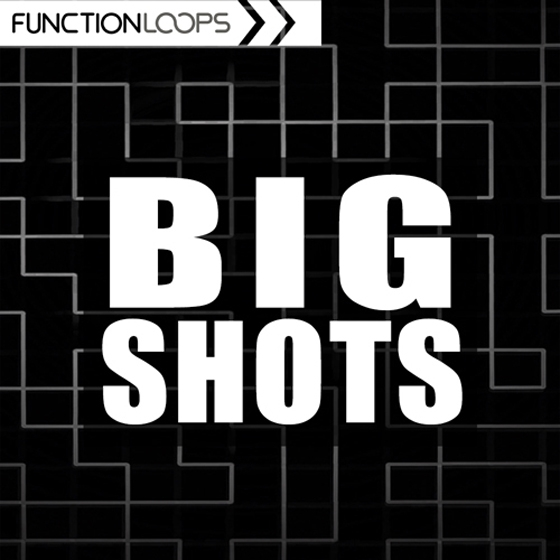 Function Loops Big Shots WAV