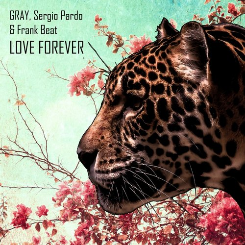 GRAY, Sergio Pardo, Frank Beat – Love Forever [DSB035]