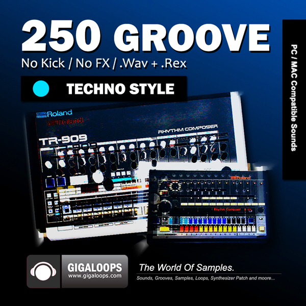 Giga Loops 250 Grooves Techno Style WAV REX-DISCOVER