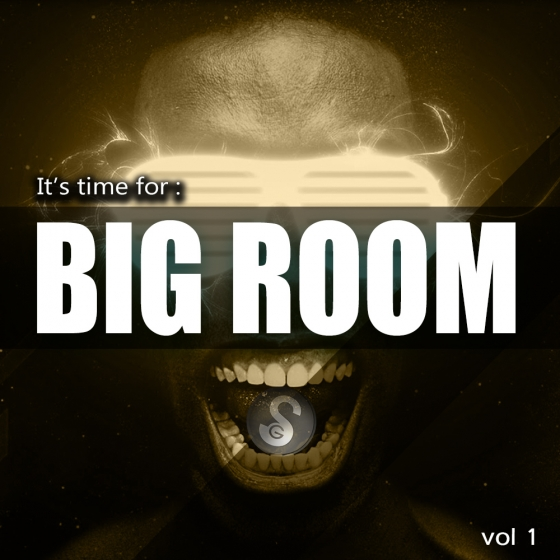 Golden Samples Its Time For Big Room Vol 1 WAV MiDi