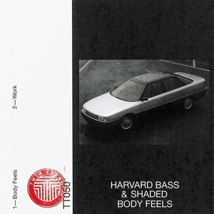 Harvard Bass, Shaded (LA) – Body Feels