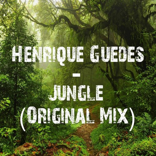 Henrique Guedes - Jungle - Single [SKCD0234]