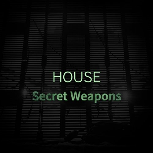 House Secret Weapons