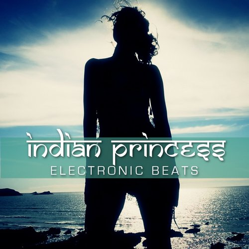 Indian Princess - Electronic Beats (Club Mixes) [361459 6453651]