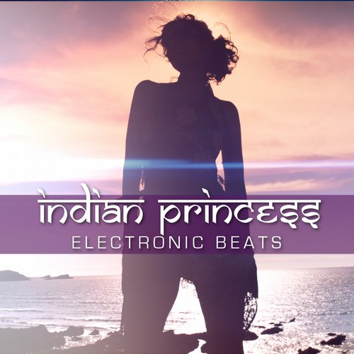 Indian Princess - Electronic Beats (Rich B & Phil Marriott Radio Edit) [361459 6548395]