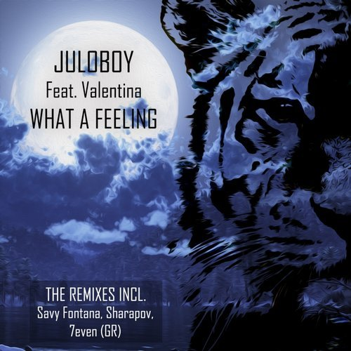 Juloboy, Valentina – What a Feeling [DSB107]