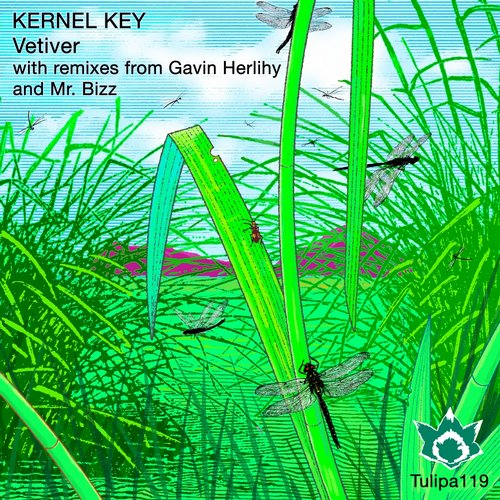 Kernel Key - Vetiver [TULIPA119]