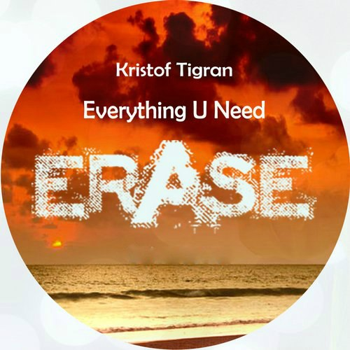 Kristof Tigran - Everything U Need [ER308]