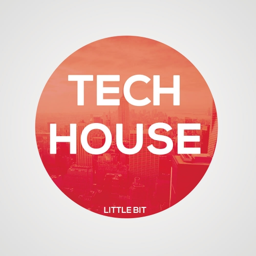 Little Bit Tech House 2